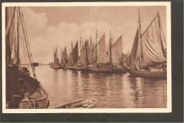 P254 Bild 110.W.H.W. Lotterie 1934/35. Warnemünde, Hafen. Segelschiffe