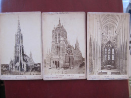 3 Photos - ULM - TRIER - CATHEDRALE - MÜNSTER - Photo HERRLINGER 1883  Format : 16 X 11 Cm    (no Postcard) - Ulm