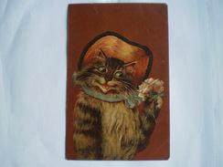 Dressed Cat - Chat // Style Louis Wain - Thiele // 1905 Ed K.F.Paris France 586B - Illustrateurs & Photographes