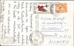 1965 Algeria / Constatine   - Nice Stamp !!!