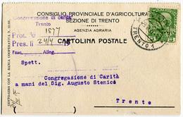 STORIA POSTALE PERFIN CPA CONSIGLIO PROVINCIALE AGRICOLTURA IMPERO AUSTRIA TRENTO 20 APRILE ANNO 1915 - 1850-1918 Imperium