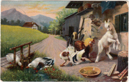 Coq Canard Oie Chèvre Animée, Colorisée Serie 1149/4 - Animals