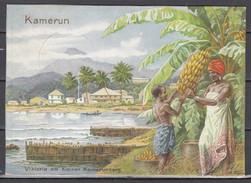 """Kamerun/Dt.Reich Colorkarte """"Unsere Kolonien"""" Abb Kamerun Viktoria Am Kleinen Kamerunberg Mit SSt Dresden 1939"""