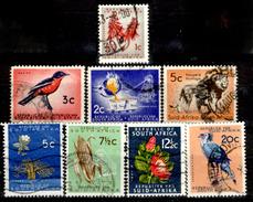 Africa-del-Sud-0049 - Valori Emessi Negli Anni 1961-1964 (o) Obliterated - Privo Di Difetti Occulti.