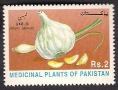 1997 Pakistan Garlic, Vegetable, Plant, Agriculture, Medicinal Plants Series (1v) MNH (PK-53)