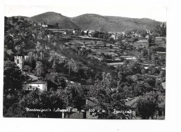 MONTEMIGNAIO PANORAMA VIAGGIATA FG - Arezzo