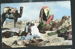 Scènes Et Types - Campement De Nomades   Obe0803