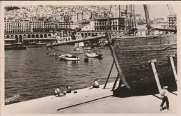 ALGER - Le Port, Pris Du Club Nautique