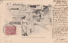 ALGER - Sur Les Terrasses De La Casbah