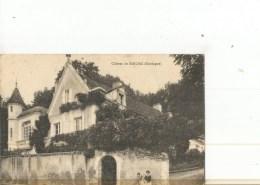 SARLIAC CHATEAU   GROS PLAN DEVANT PERSONNAGES - France