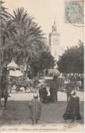 ALGER - Palmiers, Place Du Gouvernement