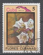 Cuba 1983. Scott #2637 (U) Flowers, Kalmiella Ericoides * - Cuba