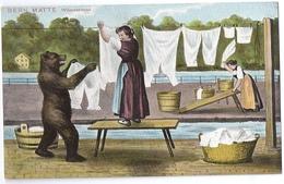 Künstler-AK Gehri: Bär Hilft Beim Wäsche Aufhängen, BERN Matte ~1910 - Ours