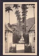 Old Post Card Of Jardim Botanico,Rio De Janeiro,Brasil,J12. - Rio De Janeiro