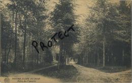 Notre-Dame-au-Bois  //  Jezus-Eik :    ( Geschreven  1922 Met   Zegel ) - Belgique