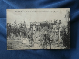 Escardes  Tombes De Soldats Francais Glorieusement Tombés Les 6 Et 7 Septembre 1914 - Animée - Circulée - L278A - France