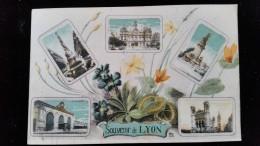 CPA  Souvenir, Bonjour, Pensée De Lyon - Souvenir De...
