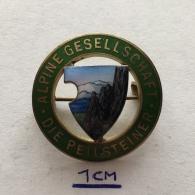 Badge (Pin) ZN003627 - Alpinism (Mountaineering / Hiking) Alpine Gesellschaft Die Peilsteiner - Alpinisme, Beklimming