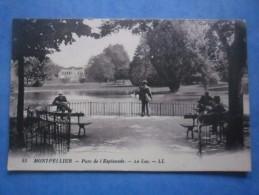 34-MONTPELLIER Parc De L'esplanade , Le Lac , Animée - Montpellier