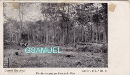 Espagne - Guinée Espagnole - Guinea Espanola - Un Desbosque En Fernando Poo – (Cavalier) - (voir Au Dos). - Equatorial Guinea