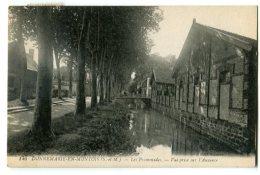 Donnemarie En Montois Les Promenades Vue Prise Sur L'Auxence - Dammarie Les Lys