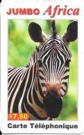 IDT - Jumbo Africa, Zebra - Frankreich