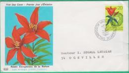 FDC Liechtenstein -  Premier Jour - 1970 - Année Européenne De La Nature - Lys Orangé - N°470 - FDC