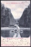 Austria Vienna 21. 9. 1899 / Gruss From Schonbrunn / Obelisk Alee - Castello Di Schönbrunn