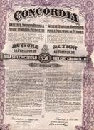 4 Actions De 250 LEI  CONCORDIA Sté Anonyme Roumaine Pour L'Industrie Du Pétrole 1920,1921,1923,1924- 2 Coupons Chacunes - Pétrole