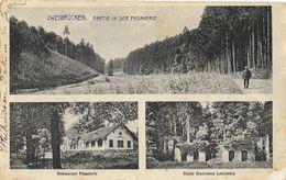 Zweibrücken - Partie In Der Fasanerie (Restaurant, Ruine Stanislaus Leszinsky) - Zweibruecken