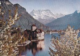 Suiza --Chateau Du Lac Lemon-- - Castillos