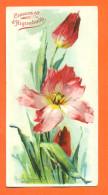 CPA Chocolat D´aiguebelle CATHARINA KLEIN  - Tulipes - 140 Mm X 70 Mm - Klein, Catharina