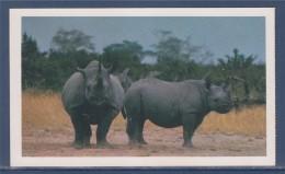 = Carte Postale Rhinocéros, Safari Prisunic, De La Famille Des Bovins, Mammifère Herbivore Famille Des Rhinocerotidae - Rhinocéros