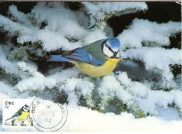 Oiseaux La Mesange Bleue  Oblitération Ordinaire - Zangvogels