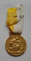 Vaticano Medaglia Premio Annuale Scuola Pontificia Pio IX - Royaux/De Noblesse