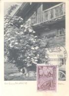 BAUMGARTEN BEI HOLZKIRCHEN CPA ECRITE AU DOS 1967 AVEC RARISIME SPECIAL COVER PRIMERA GRAN EXPOSICION DE HORTICULTURA  B - Agriculture