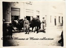 TUNISIE BIZERTE 1928 - CHARGEMENT DES COURSES SUR LES CHAMEAUX - RUE ET MAGASINS - PHOTO MILITAIRE ZOUAVES 12 X 9 CM - Guerre, Militaire