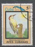 Cuba 1983. Scott #2655 (U) Bird, Melanerpes Superciliaris * - Cuba