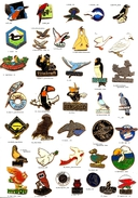Divers-Oiseaux_Colombe_Rapace_Hibou_Autres__ 2 Pin´s Aux Choix Sur 38 Présentés_ - Animals