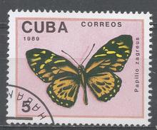 Cuba 1989. Scott #3104 (U) Butterfly, Papilio Zagreus * - Cuba