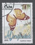 Cuba 1991. Scott #3290 (U) Butterfly, Hypolimnas Misippus * - Cuba