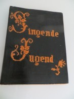 Unsere Singende Jugend Elsass-Lothringen Chants Protestants Jeunesse Alsace-Lorraine 1929 - Books, Magazines, Comics