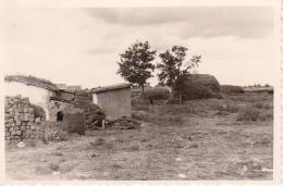 Foto Gehöft Nowo Troitzkoje - Südukraine - Herbst 1941 - 9*6cm  (25495) - Orte