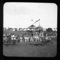 11 - CUBA - CHAMP DE COURSE - LA HAVANE - Course De Trot  ( Environs De 1900) - Plaques De Verre