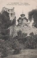 LILLEBONNE -76- VIEUX CHATEAU - SOMMET DE LA TOUR OCTOGONE ET PIGEONNIER - Lillebonne