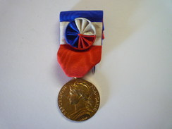 MEDAILLE  Du  TRAVAIL  1973   - Other Collections