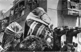 ALGERIE(BISKRA) OULEDS NAILS - Biskra