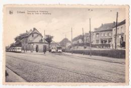 Dilbeek: Tramstatie En Molenberg. - Dilbeek