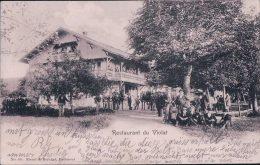 Courrendlin, Restaurant Du Violat, G. Hr. Blaser (88) - JU Jura