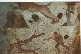 Mozaic Of A Hunting Scene. Mosaic Museum Of  Istanbul   # 05259 - Musées